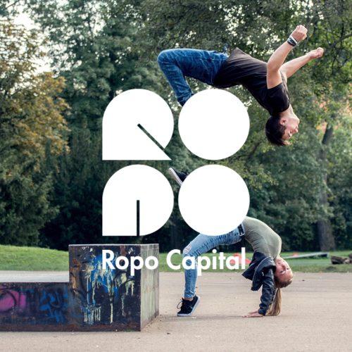Ropo Capital - asiakaskysely
