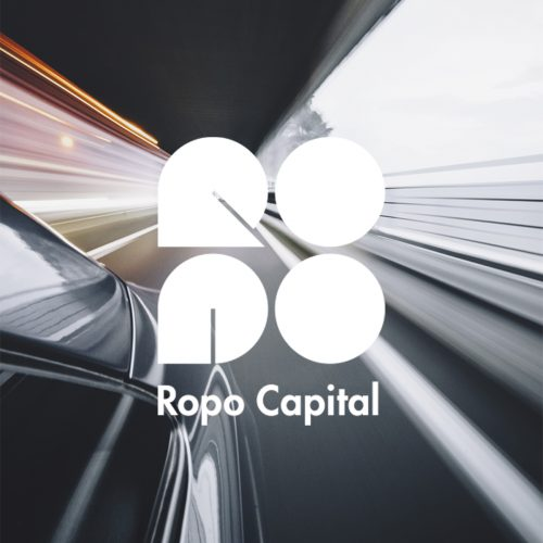Ropo Capital - Collection Advisor