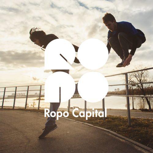 Ropo Capital - Suur-Savon Sähkö